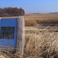 MTBシュインで「渡良瀬遊水地の干し上げ」を観察してきた。