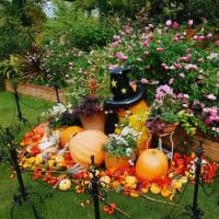 四季の香ローズガーデンも秋色