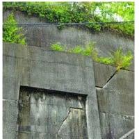 防災対策50年置き去り 徳島市の中津山団地、豪雨・強震で山腹崩壊恐れ