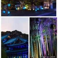 夏の夜散歩  〜長谷の灯り2019