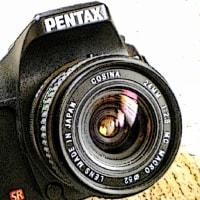 PENTAX K200D + コシナ  24mm F2.8 MC MACRO