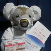 日本航空さんの 株主優待が届きました