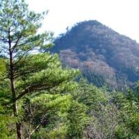 初冬の【尖山】自然散策・観察