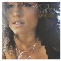 "Michelle Shaprow, ""Purple Skies"" (2011)"