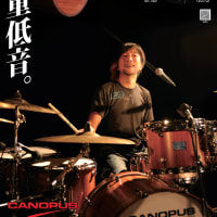 CANOPUS/カノウプス Stave Bubinga Drum Kit