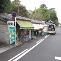 【愛知県・一宮市】真清田神社横の商店街