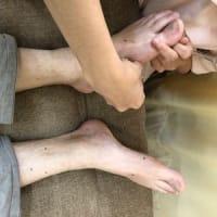 七星鍼法の魅力(Part13) 虚証の治療は難しいが‥‥
