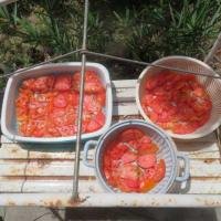 POMODORO Cuor di Bueの干しトマト