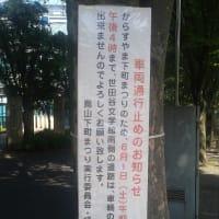 石ノ森章太郎展も観覧無料 世田谷文学館で「セタブンマーケット」