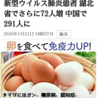 卵で免疫力アップ【新型ウイルス肺炎】は怖くない!新型のコロナウイルス!毎日3個以上食べよう! 死者9人 患者【さらに感染拡大も】日本にも影響!卵はインフルエンザ、風邪、がん、糖尿病、心臓疾患、認知症