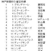神戸新聞杯の確定枠順