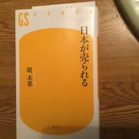 堤未果 『日本が売られる』