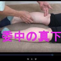 首筋が痛く、腰も痛い:膀胱査穴 (11/24の臨床実践塾準備)