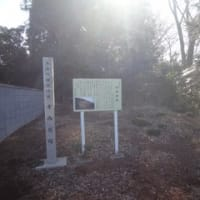 縄文人のゴミ捨て場にて ―寺西貝塚―