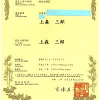 テラファイトコアは、意匠登録がなされています