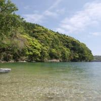 新緑を愛でる春におすすめの屋久島カヌーガイドツアー
