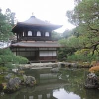 奈良、京都旅行
