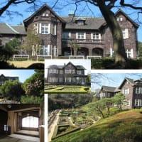 春の東京いい庭キャンペーン 旧古河庭園