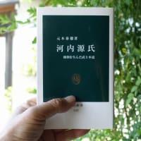 元木泰雄「河内源氏」(中公新書 2011年刊)レビュー