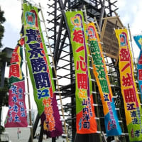 今日は妻と二人で東京散策。とんかつ食べて、神田明神でお参り、両国で相撲の雰囲気に触れる。