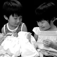 Newborn photo ニューボーンフォト 2012 pick up
