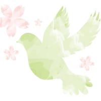 【お知らせ】🌸4月の予定🌸  4/27現在