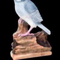 注文品 シルバー文鳥