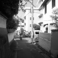 桜坂 No.3   (中央区)