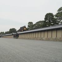 京都御苑の紅葉なごり Ⅱ