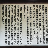 【鹿島神宮「神鹿」奈良の都への集団移住イベント】