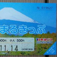 みしまるきっぷ (静岡県三島市)三島市内の観光巡りに便利