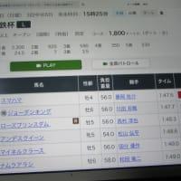 GⅢ トヨタ賞中京記念 ⑦プリモーシ/福永 コメント トーンが ↓ 下がっている      № 657