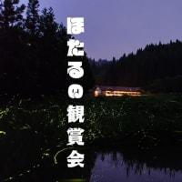 ほたるの観賞会 2019年7月1日(月)〜31日(水)