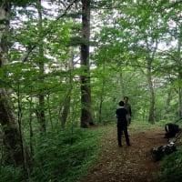 七滝〜大地獄谷〜お花畑〜御苗代湖 7/14