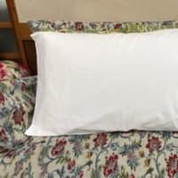 通販生活のメディカル枕