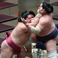 照ノ富士にまわしをとらせず、腕も伸ばして攻め切った