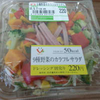 サークルKサンクス「9種野菜のカラフルサラダ」