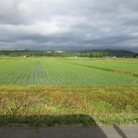 フォト旅日記zqt1702『 2 牧場 3 水田 』