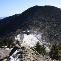 大菩薩嶺 4.稜線を往く