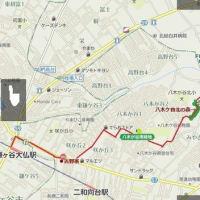 船橋県民の森から鎌ヶ谷大仏駅まで歩く