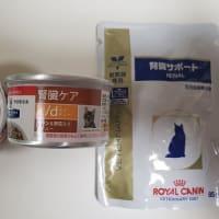 れんれんの療法食☆ヒルズのk/d缶&ロイヤルカナンのパウチの巻~