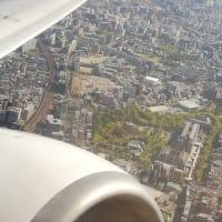 恒例の機上からの景色