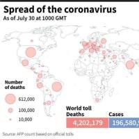 新型コロナウイルス、現在の感染者・死者数(30日午後7時時点) 死者420.2万人に AFPBB News 2021/07/30 23:03