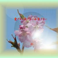 瘋癲老仁妄詩306-05『 愛ぐるい生ぐるい今花ぐるい 』zqm0206