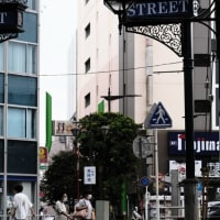 【市川】JR市川駅から例年花火大会も開かれる江戸川へ歩いた  Walk from JR Ichikawa Sta. to Edogawa Riverside.【Osmo Pocket/X-E4】