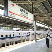 N700系「ひかり504号」静岡-新横浜(2019年8月 神奈川、東京の旅)