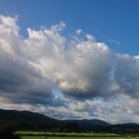【遠征】【台風】【ラディ】