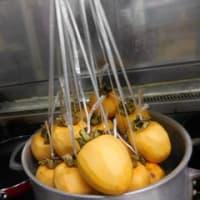 干し柿作りに挑戦!