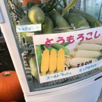 北海道〜網走マラソン観光編その3
