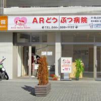 ● ARどうぶつ病院です。㊗開院4周年🏥
